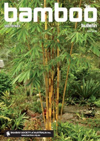 Bamboo Bulletin Nov 2016