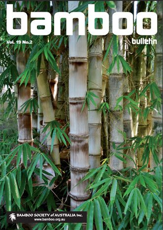 Bamboo Bulletin Nov 2017