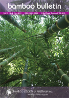 Bamboo Bulletin Dec 2011