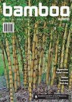 Bamboo Bulletin Apr 2015