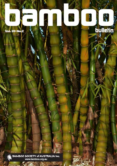 Bamboo Bulletin – Volume 20 No2